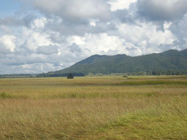 Ekosistem Savana TNRAW (Sugiarto, 2010)