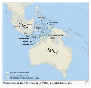 Garis khayal wallacea (http://id.wikipedia.org/wiki/Wallacea)