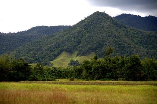 Perpaduan ekosistem savana dan gunung di TN Rawa Aopa Watumohai (Sugiarto, 2014)