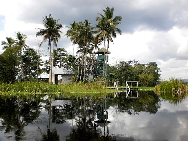 Pulau Harapan Rawa Aopa (Sugiarto, 2010)