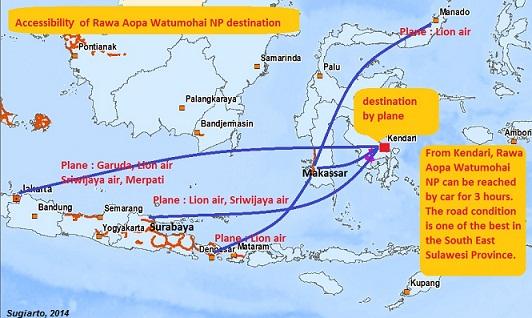 Rute penerbangan ke Taman Nasional Rawa Aopa Watumohai Sulawesi Tenggara