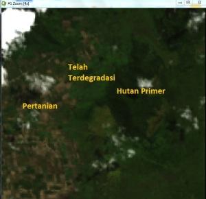Tampilan citra landsat 8 di wilayah Kabupaten Kolaka