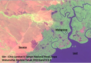 Komposit_band_citra_landsat_ArcGIS_5
