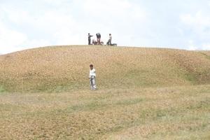 Gundukan perbukitan Pampaea menjadi obyek perburuan foto topografis